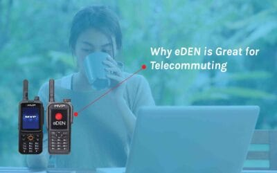 eDEN: Why It's a Terrific Telecommuting Alternative for Teams